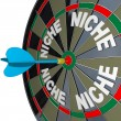 Niche Words on Dartboard Dart Hones on Specialized Demo — Stock Photo