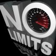 Stock Photo: No Limits Speedometer Words Unlimited Potential