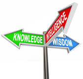 Knowledge Intelligence Wisdom Words on Arrow Signs — Stock Photo