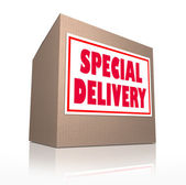 Special Delivery Mailed Cardboard Box Shipment — Stock Photo