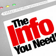 The Info You Need Website Screen Computer Internet Browser — 图库照片