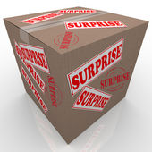 Surprise Box Shipped Cardboard Package — Stock Photo