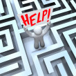 Stock Photo: Person in Labyrinth Maze Holding Help Sign
