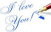 I love You romantic Valentine pen words — Stock Vector