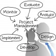 Project Management manager drawing diagram - Stock vektor
