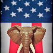 RepublicElephant — Stock Photo #8523449