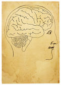 Vecchio stile testa e cervello illustrazione — Foto Stock