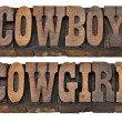Cowboy and cowgirl isolated words — Stock Photo