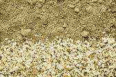 Kenevir tohumu ve protein tozu — Stok fotoğraf