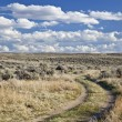 Sagebrush high desert in Wyoming - Stock Photo