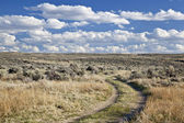 Sagebrush high desert in Wyoming — Stock Photo