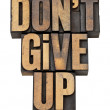 Постер, плакат: Do not give up phrase