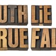 Stock Photo: Truth, lie, true and false in wood type