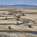 River meanders in North Park, Colorado — Stock Photo