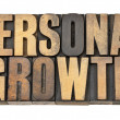 Personal growth in wood type — Stock Photo