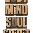 Stock Photo: Body, mind, soull and spirit in wood type
