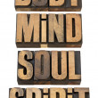 Body, mind, soull and spirit in wood type — Stock Photo #10622711