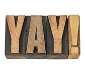 Yay exclamation in wood type — Stock Photo
