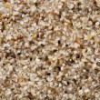 Sand grain at 4x life-size — Stock Photo