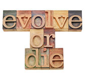 Ewoluować albo umrzeć - ewolucja koncepcji — Zdjęcie stockowe
