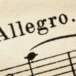 Stock Photo: Allegro - fast music tempo