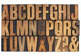 Alfabet w drewniane typ typografia — Zdjęcie stockowe