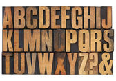 Alphabet in letterpress wood type — Zdjęcie stockowe