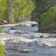 Stock Photo: Springtime whitewater in Colorado
