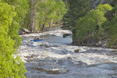 Springtime whitewater in Colorado — Stock Photo