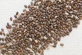 Chia seeds on white canvas — Stock Photo