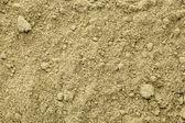 Organic hemp protein powder — Stock Photo