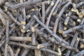 Pile of sticks — Stock Photo