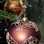 bolas decorativas de Natal — Foto Stock