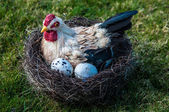 Hen And Eggs — Stock Photo