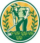 Jardineiro agricultor com repolho jardim enxada — Vetorial Stock