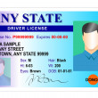 Stock Photo: Generic male state driver license