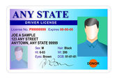 Generic male state driver license — 图库照片