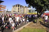 Auckland Round the Bays 8 km Fun Walk 2011 — Stock Photo