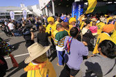 Australia Rugby Rugby World Cup 2011 supporters — Stock Photo