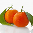 Mandarins — Stock Photo