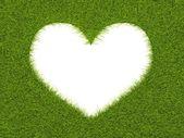 Telaio di forma cuore da erba — Foto Stock