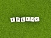 Word spring on blocks — Stock Photo