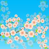 Bright Spring Background With Sakura — Stock Vector