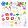 Set of Flower Elements — Stock Vector