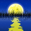 Yellow moon with reflection at water and grass meadow — Stock Vector #9537072