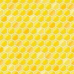 modèle sans couture avec les nids d'abeille — Vecteur