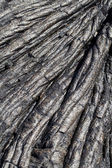 Closeup of old dried lava flow Hawaii — Stock Photo
