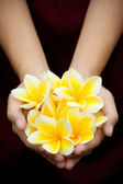 Yellow tropical flowers on hands — Stock Photo