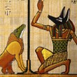 Egyptian Papyrus — Stock Photo #9571545