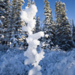 Winter In The Rocky Mountains - Stock Photo